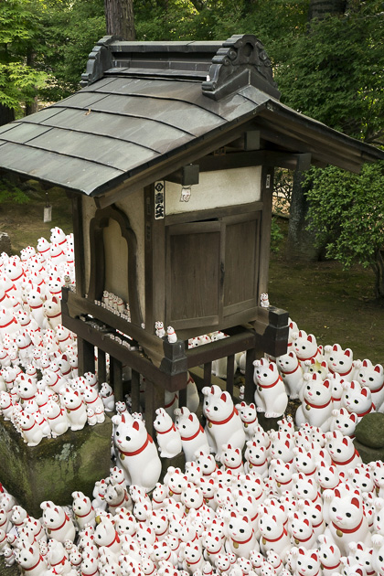 The Cat Temple In Tokyo_13