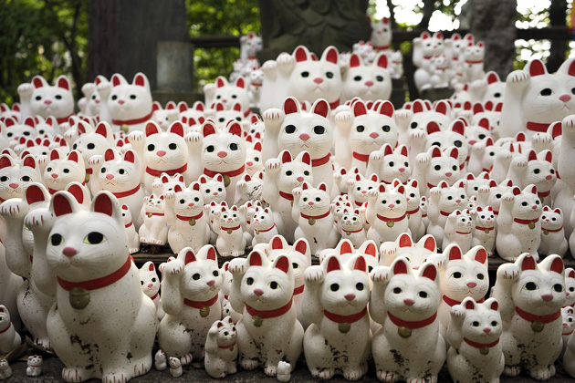 The Cat Temple In Tokyo_8
