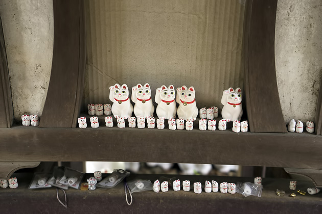 The Cat Temple In Tokyo_10