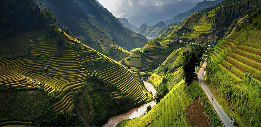 Paddy_Fields_Art_ Asia_3