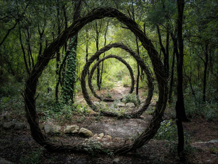 Spencer Byles_Sculptures_Forest