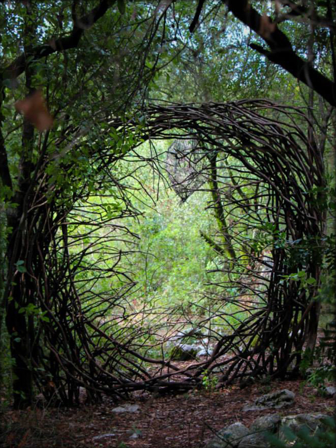 Spencer Byles_Sculptures_Forest_12