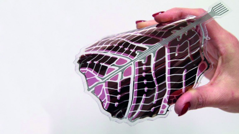 Finnish Scientists Design Ornate Organic Solar Panels