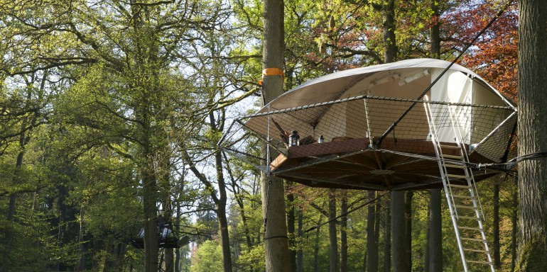 Dome Up A Treehouse Doubling Up As A Cabin Shelter