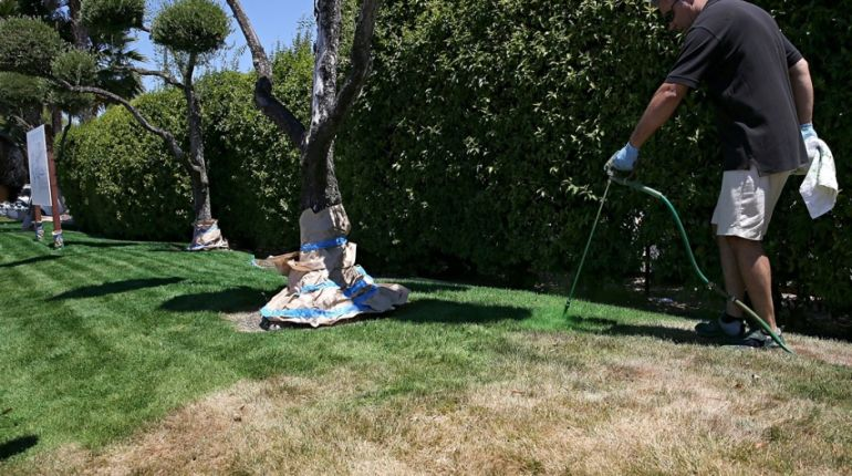 Californians Turn To Paints That Would Make Their Grass 'Greener'