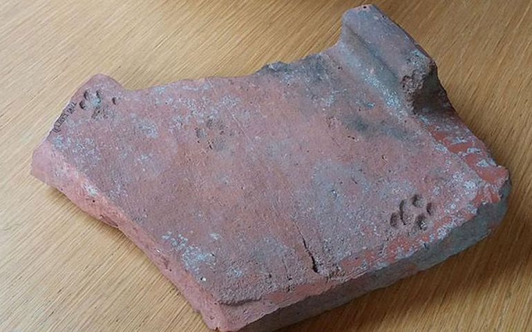 2000-Year-Old Cat Paw Prints On Roman Roof Tile-1