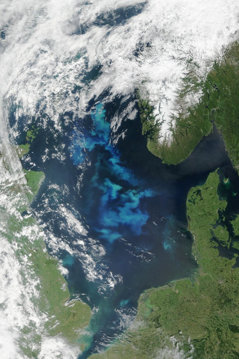 North-Sea-Algal-Bloom-3
