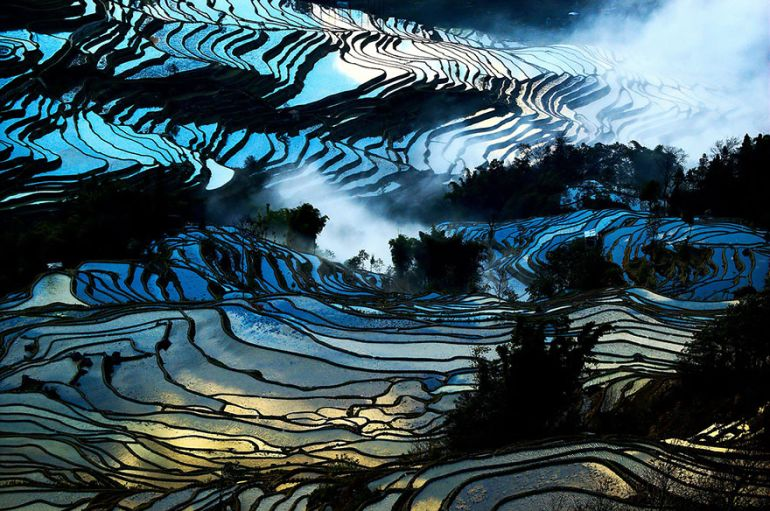 Paddy_fields_China_Amazing_Places_To_Visit_Fantasy_1