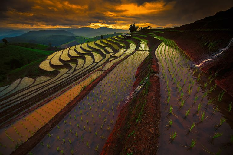 Paddy_fields_China_Amazing_Places_To_Visit_Fantasy_2