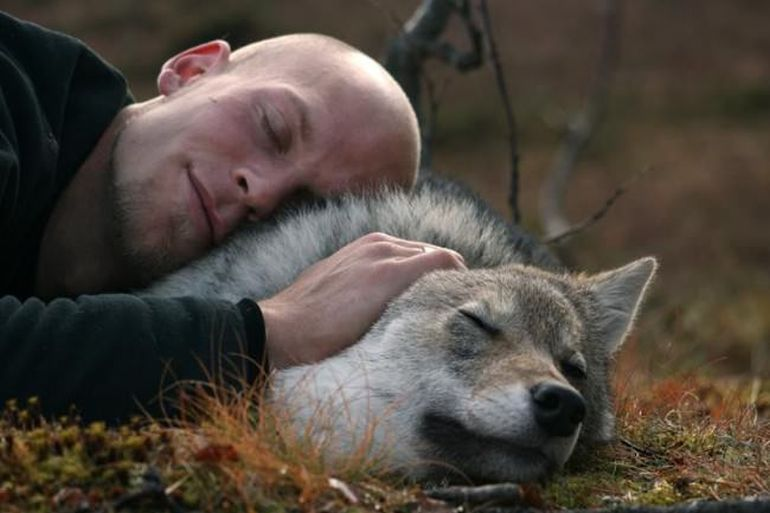 Norway's Polar Park Allows Guests To Camp Among Wolves-3