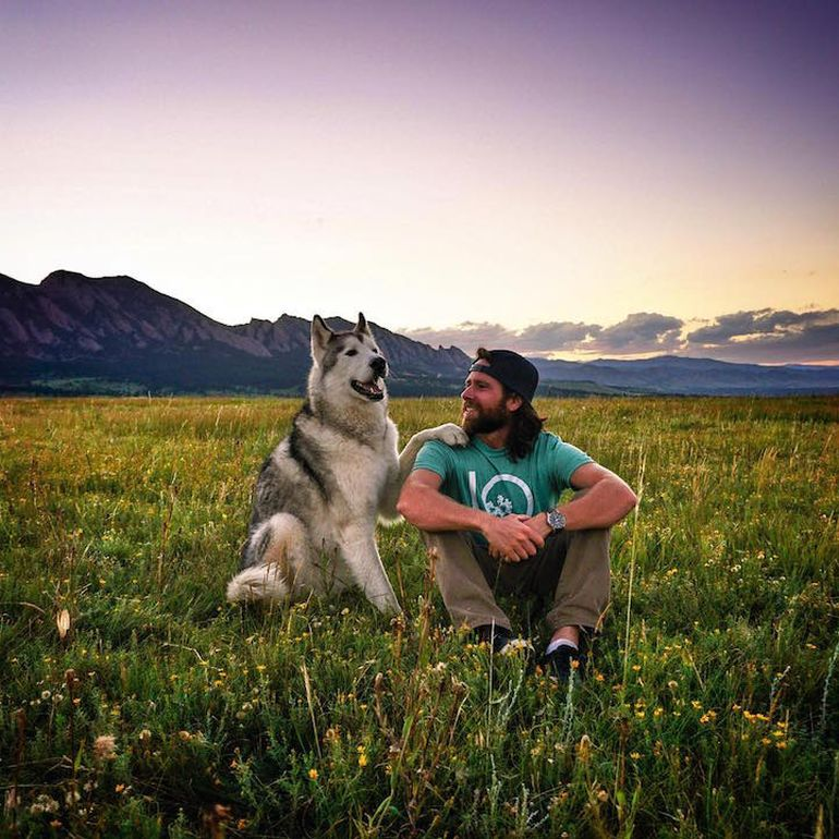 Meet Loki, The Wolfdog With 392,000 Instagram Followers-7