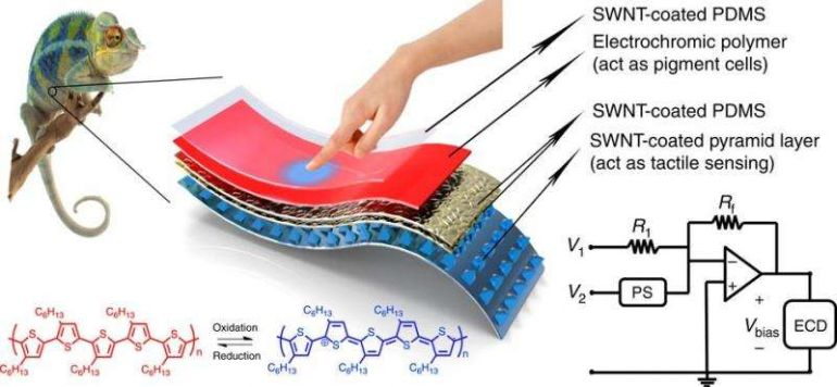 Stretchable_Color-Changing_E-Skin_Stanford_2