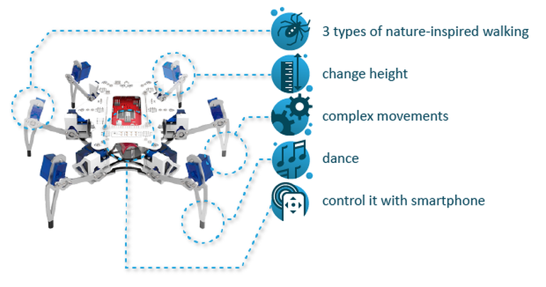 STEMI A Hexapod Robot That Can Be Built By A 13-Year-Old!--3