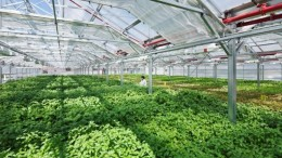 Chicago Gets The World's Largest Rooftop Urban Farm-4