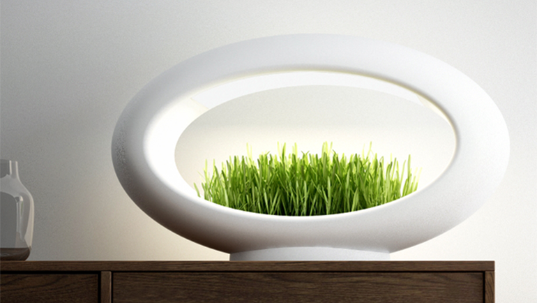 The Stunning Grasslamp Doubles As A Hydroponic Garden-1
