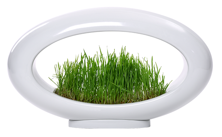 The Stunning Grasslamp Doubles As A Hydroponic Garden-2