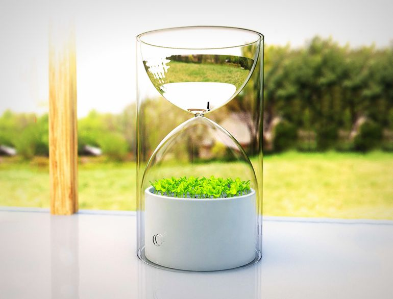 Lives_Glass_Planter_Purifies_Air_1