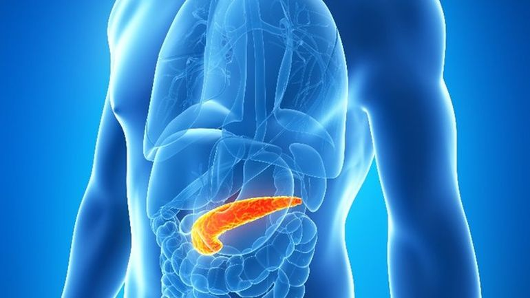 Shedding One Gram Of Pancreatic Fat Can Reverse Type 2 Diabetes-1