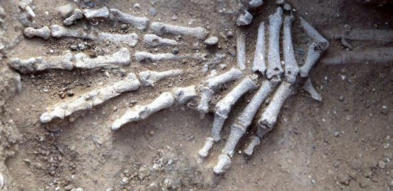 10,000-Year-Old Massacre Offers Earliest Evidence Of Organized Warfare-3