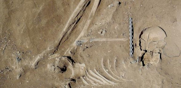 10,000-Year-Old Massacre Offers Earliest Evidence Of Organized Warfare-6