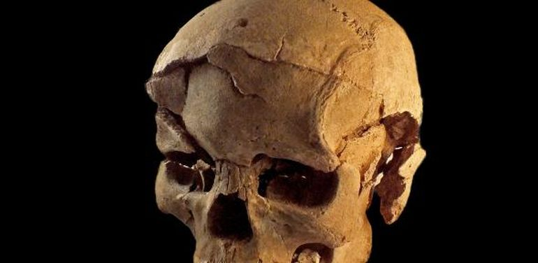 10,000-Year-Old Massacre Offers Earliest Evidence Of Organized Warfare-9