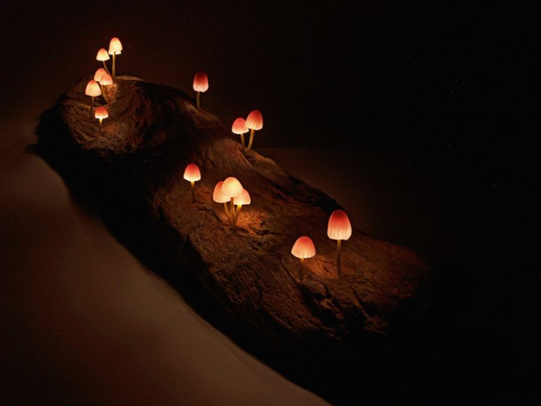 Artist Designs Tiny LED Lamps That Look Like Bioluminescent Mushrooms-4