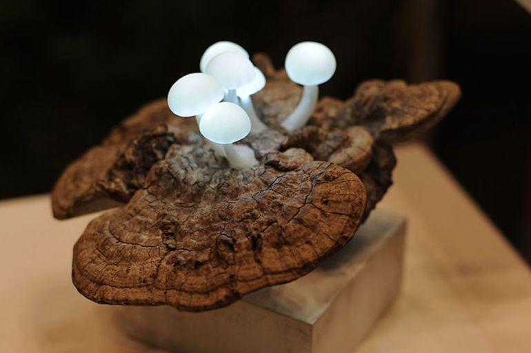 Artist Designs Tiny LED Lamps That Look Like Bioluminescent Mushrooms-6