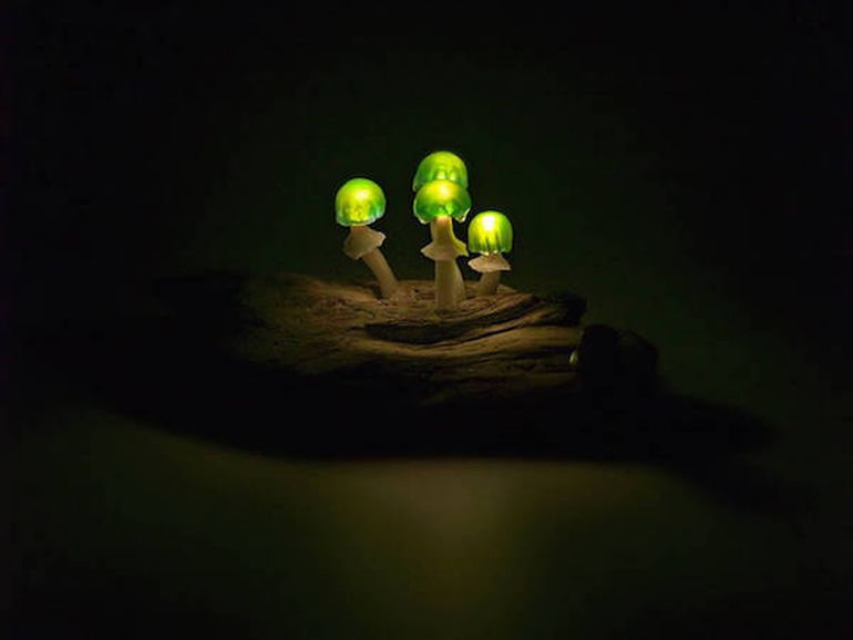 Artist Designs Tiny LED Lamps That Look Like Bioluminescent Mushrooms-8
