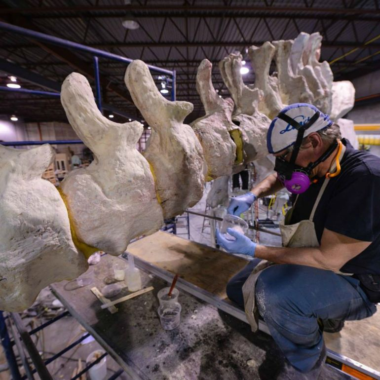 Museum Creates 3D-Printed Replica Of World's Largest Dinosaur-7
