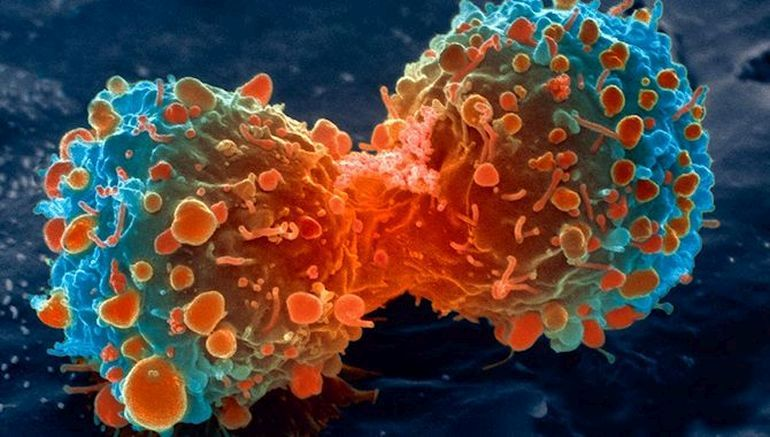 Special Drug Packaging Could Help Kill Cancer Cells More Efficiently-1