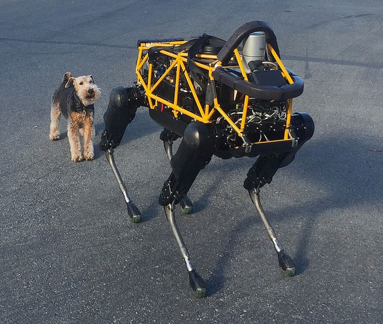 Amazing Video Shows A Terrier Locked In Battle With A Robotic Dog-1
