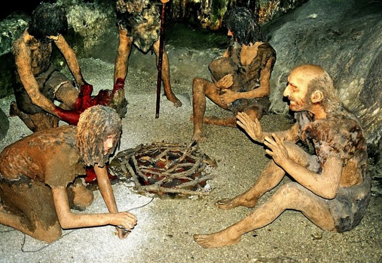 Neanderthals Consumed 80-Percent Red Meat And 20-Percent Veggies-1