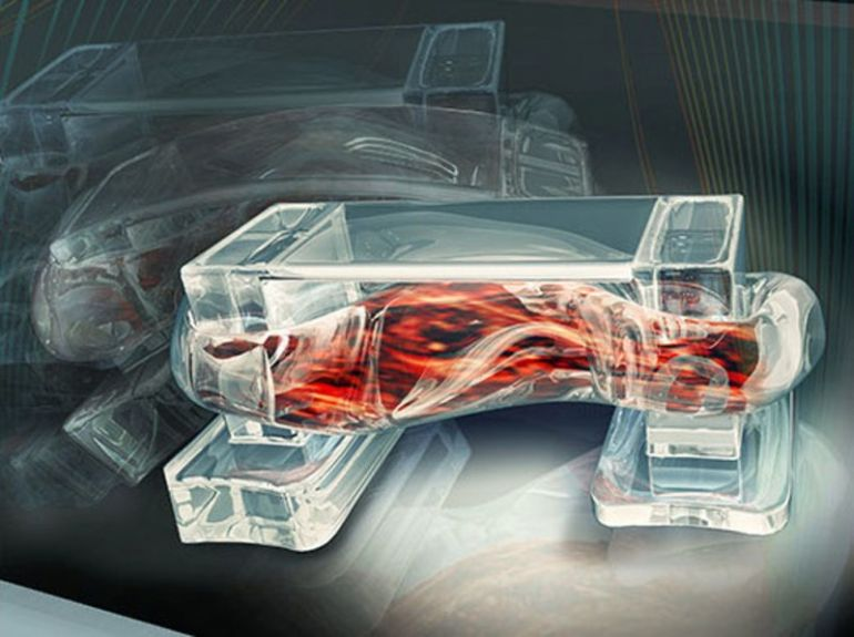 New Muscle-Powered Bio-Bots Are Programmed To Walk Towards Light-3