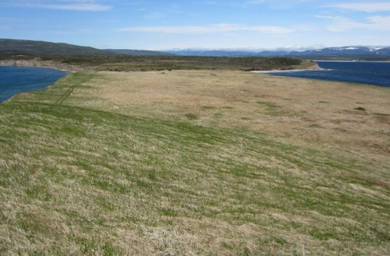 Satellite Imaging Points To Possible Viking Site In Canada-3