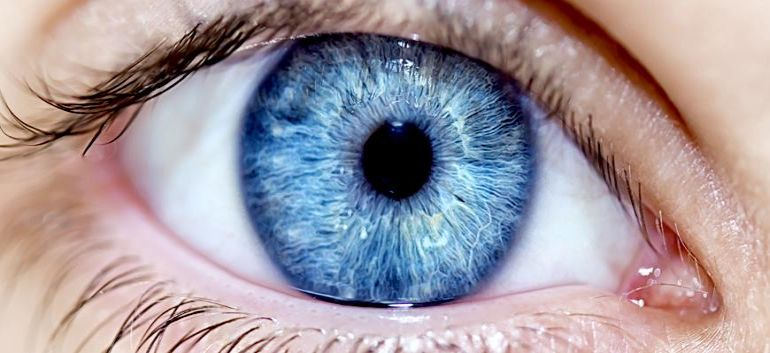 Lab-grown Corneal Cells Could Restore Vision In Elderly-3