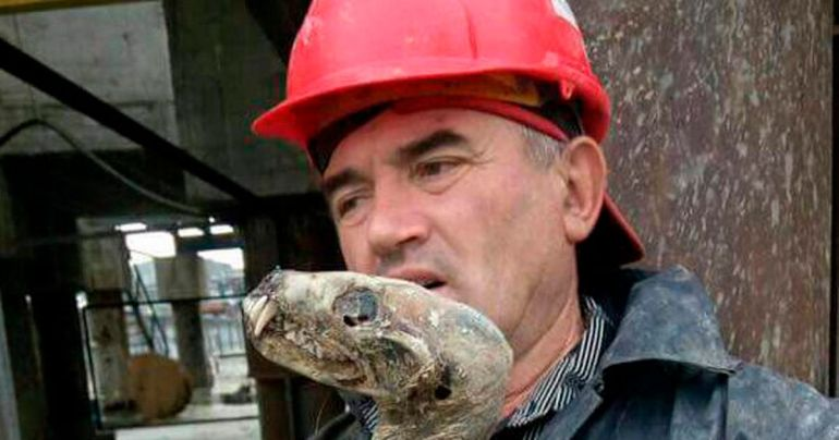 Mummified Mammal Found In Siberian Diamond Mine Not Yet Identified-2