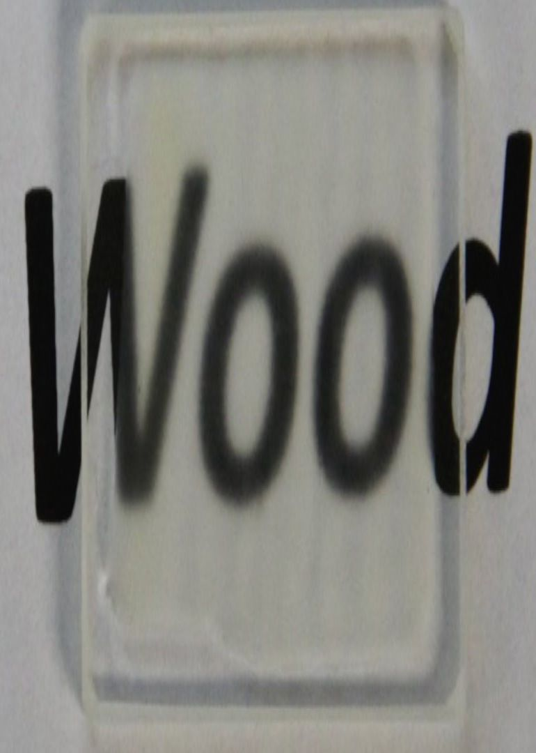 Scientists Have Developed See-Through Wood That Is Incredibly Strong-5