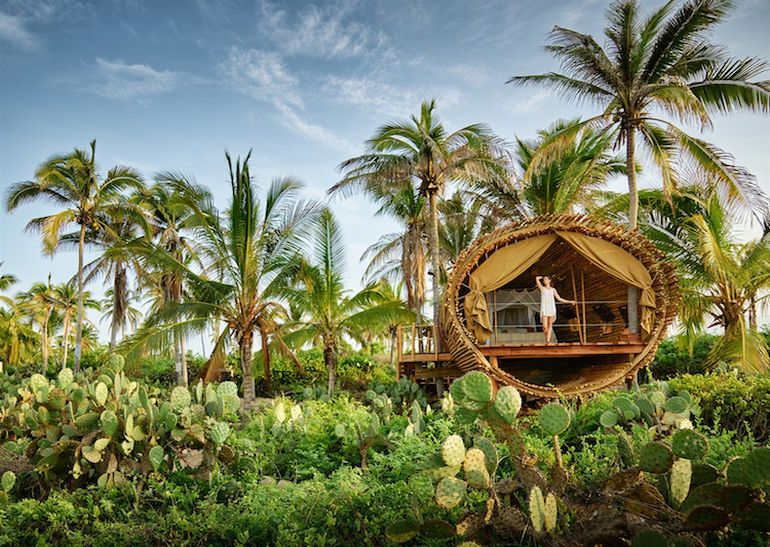 stunning-cylindrical-treehouse-in-mexico-runs-on-solar-power-2