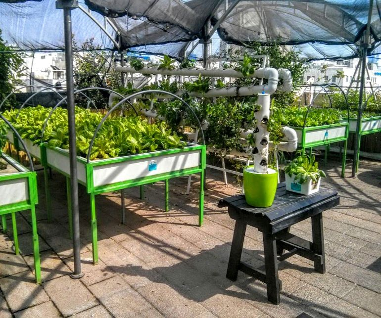 Israel's Oldest Shopping Mall Now Houses A Rooftop Organic Hydroponic Farm-3