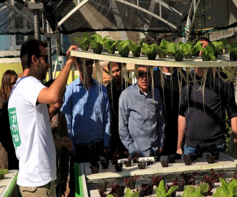Israel's Oldest Shopping Mall Now Houses A Rooftop Organic Hydroponic Farm-9