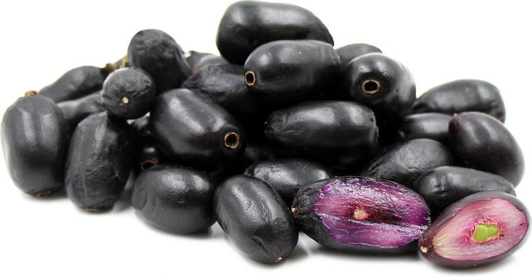 Jamun, Indian black plum, could reduce solar panel price by 40-percent-1