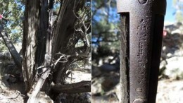 132-year-old Winchester rifle discovered-2