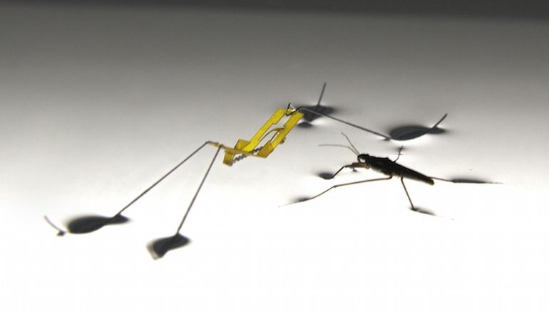Bio-Mimicking_Robot_Water_Strider_3