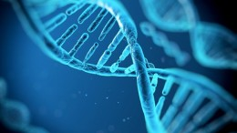 Our DNA Could Likely Shed More Light On Ancient History-1