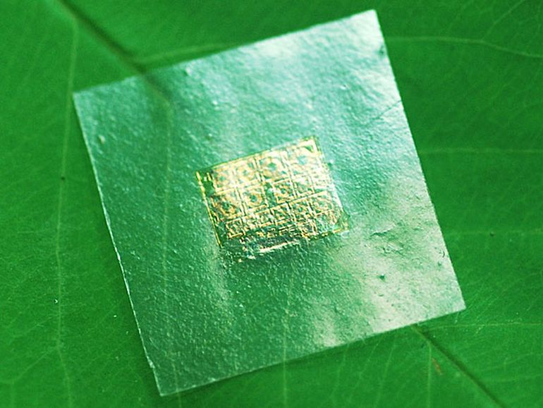 Scientists Build Biodegradable Semiconductor Chips From Wood-1