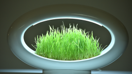 The Stunning Grasslamp Doubles As A Hydroponic Garden-3