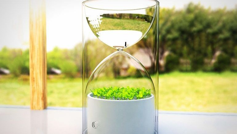 Lives_Glass_Planter_Purifies_Air