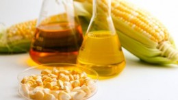 Scientists Use Microorganisms To Brew Biofuels From Waste Biomass-2