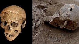 10,000-Year-Old Massacre Offers Earliest Evidence Of Organized Warfare-1