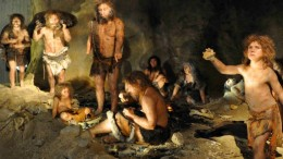 Neanderthals Consumed 80-Percent Red Meat And 20-Percent Veggies-2